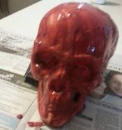 Nurse Cassandra Skull